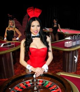 bunny casino