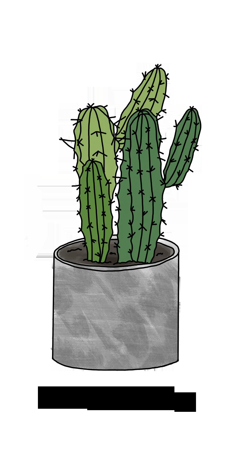 iPhone 8 Hülle Kann diesen Kaktus nicht berühren von