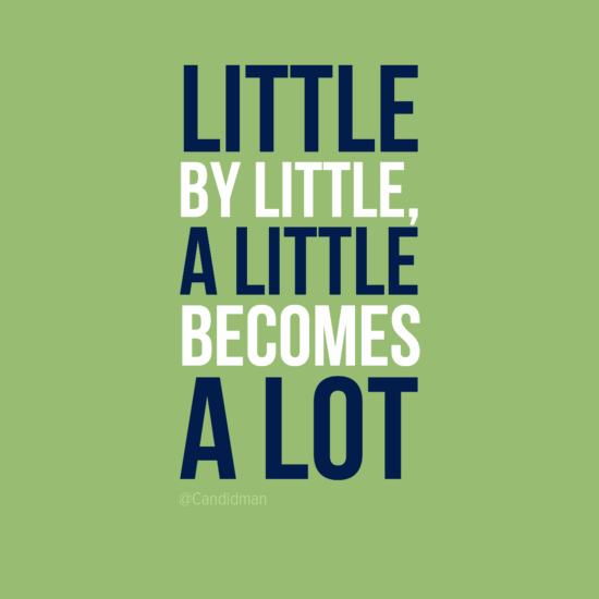 Little By Little A Little Becomes A Lot Quotes At Candidman