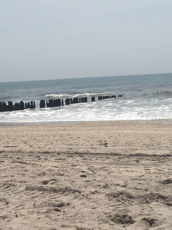 Howard Beach Ny Old Pilings Of Hotel