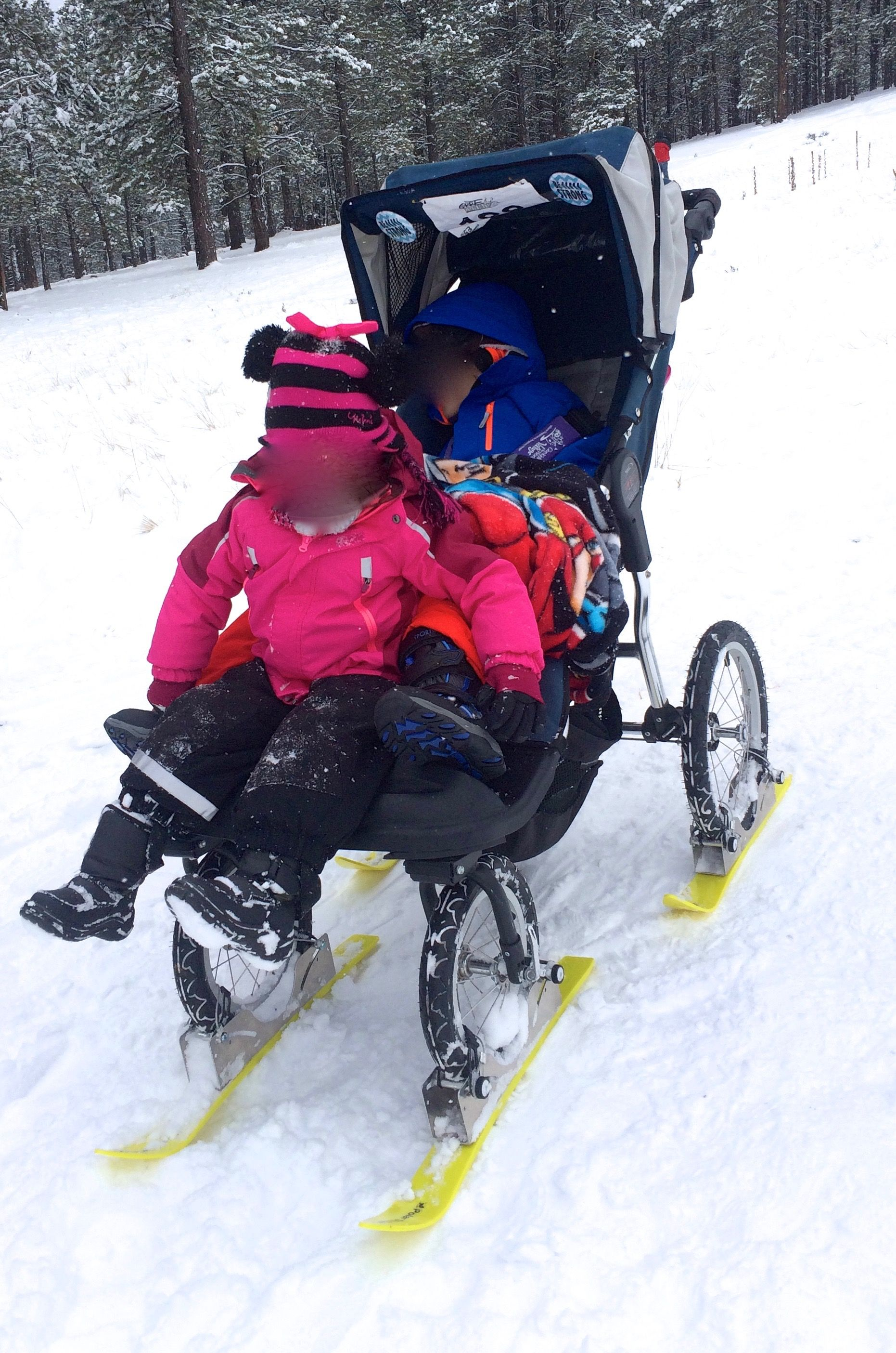 Adaptive needs stroller fit for winter adventures, with