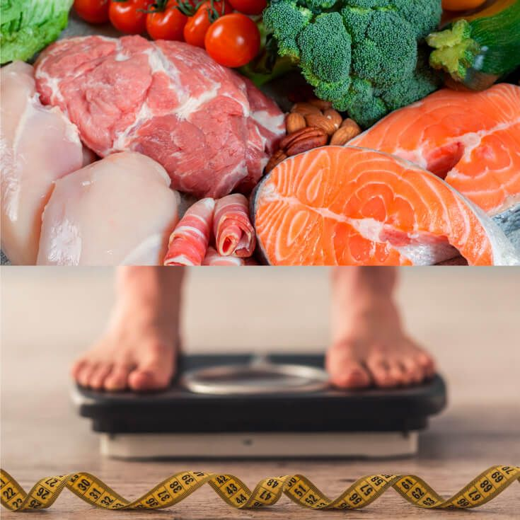 high protein diet meal plan weight loss
