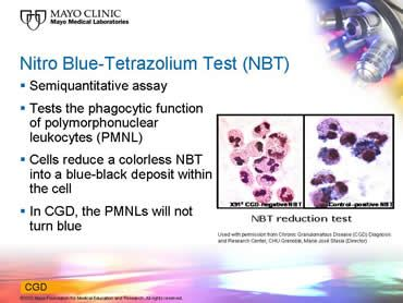 Pin By G K On Pediatrics Pediatrics The Cell Nbt