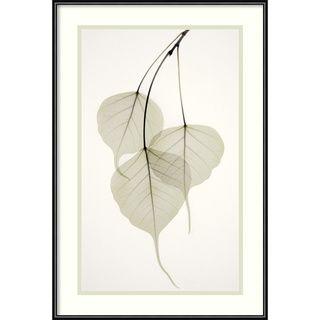 @Overstock - Artist: Albert Koetsier  Title: Bo Tree Framed Art Print  Product type: framed printhttp://www.overstock.com/Home-Garden/Albert-Koetsier-Bo-Tree-Framed-Art-Print/3942261/product.html?CID=214117 $49.99
