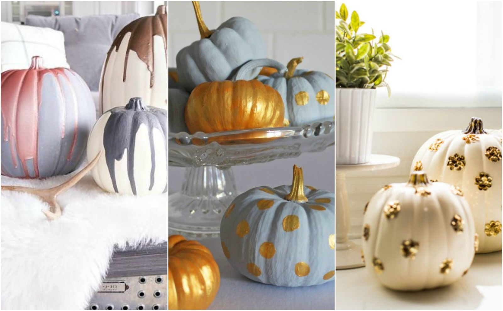 easy nocarve pumpkin ideas pumpkin decorating pumpkin ideas