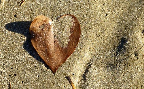 Semina di battigia ciò che passa.. il mare ne farà estate.. buona giornata in #poesia <3