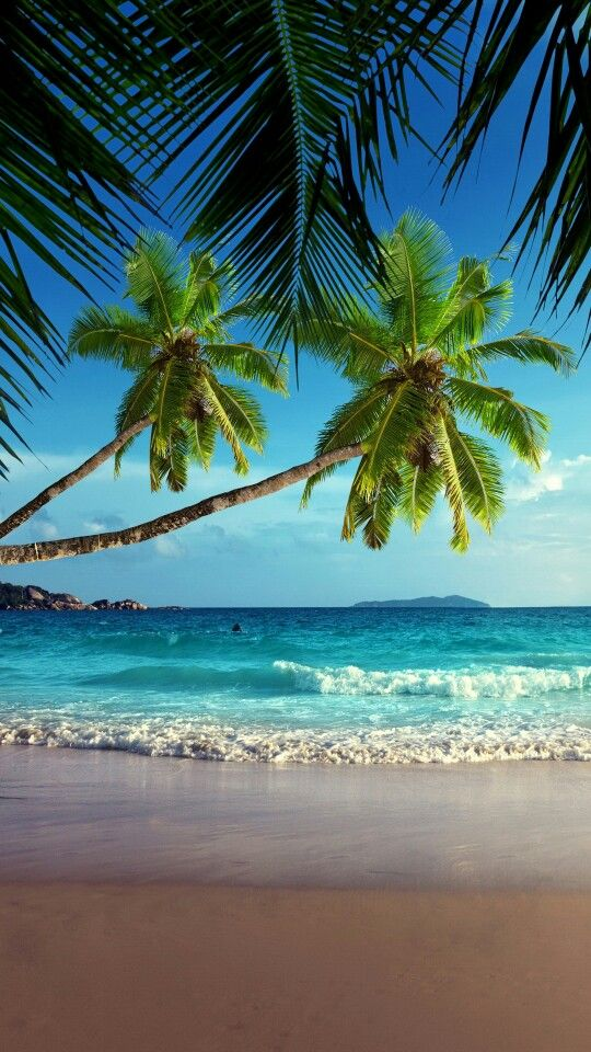 Samsung Galaxy S6 Beach Background Background Pictures Beautiful Landscapes