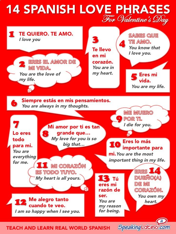 An infographic that features 14 Spanish love phrases with English translations. Express your love on Valentines Day!