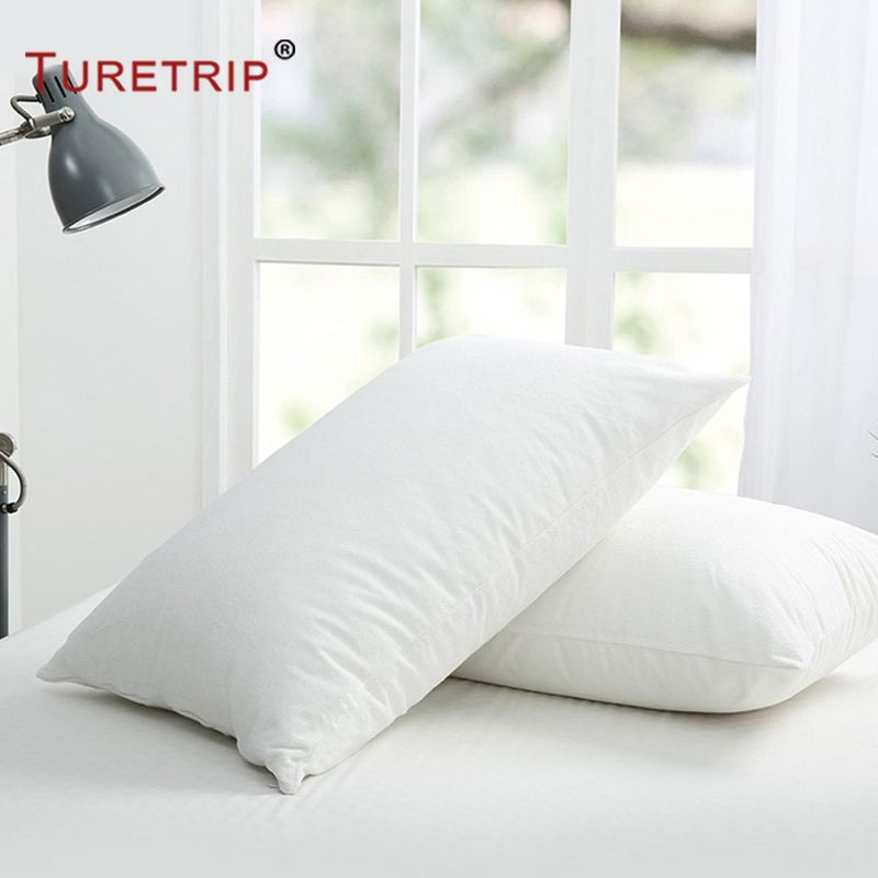 Pillow Protector Case 2 Pack With Zip