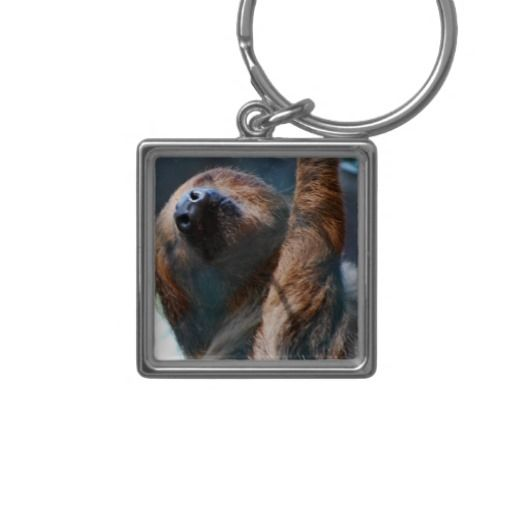 =>>Save on          Sloth Face Keychain           Sloth Face Keychain lowest price for you. In addition you can compare price with another store and read helpful reviews. BuyHow to          Sloth Face Keychain please follow the link to see fully reviews...Cleck link More >>> http://www.zazzle.com/sloth_face_keychain-146312530317968706?rf=238627982471231924&zbar=1&tc=terrest