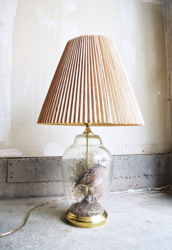 Vintage Taxidermy Quail Lamp - The Wildlife Collection In ...