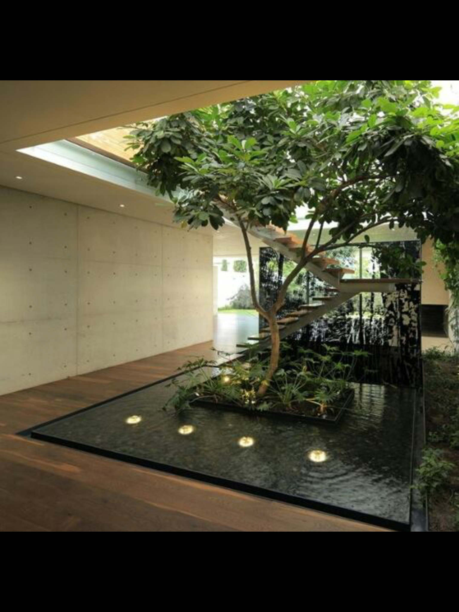 Minimalist home  Interior Garden, Interior Ideas, Interior Design