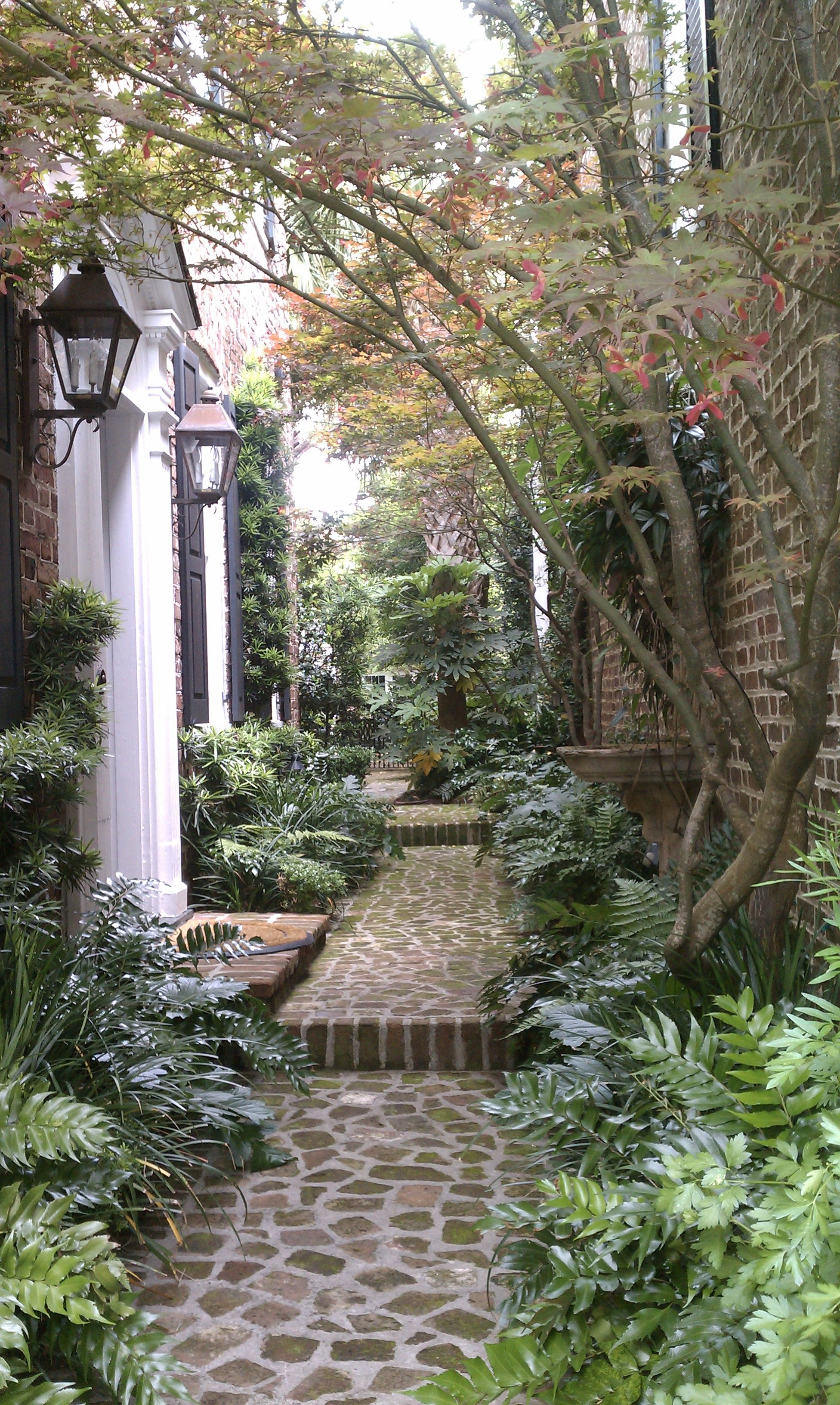 Beautiful House Garden Photo: Beautiful Pathway In Charleston, SC