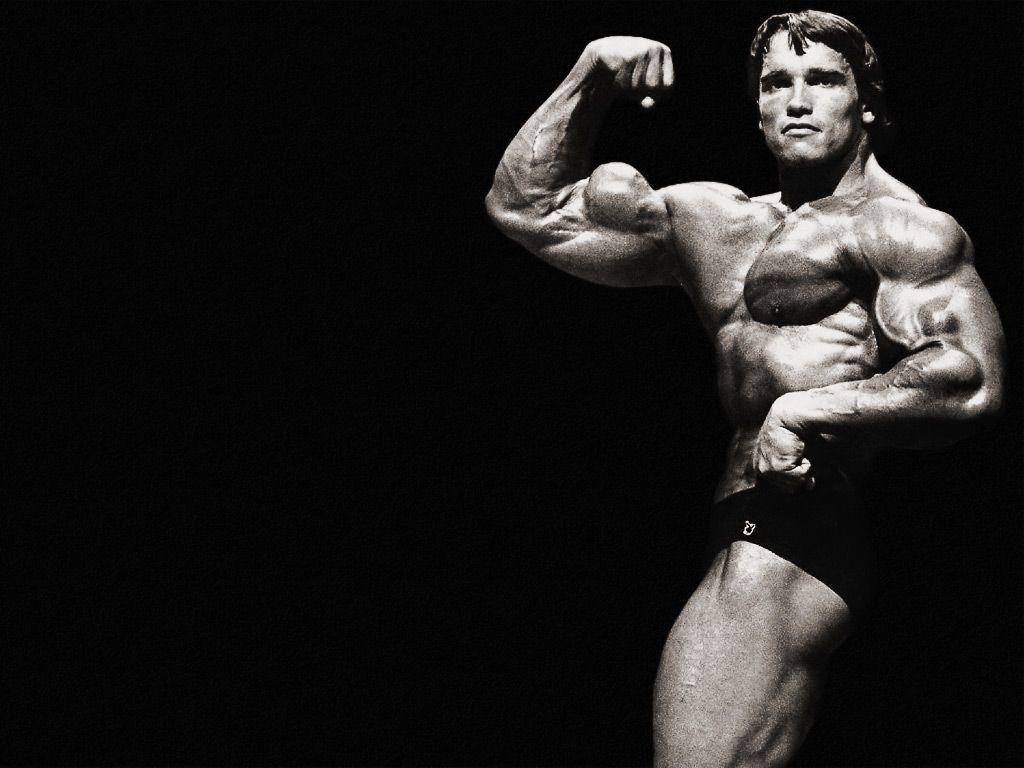 Arnold Schwarzenegger Bodybuilding Wallpaper 1280 1024 Wallpapers