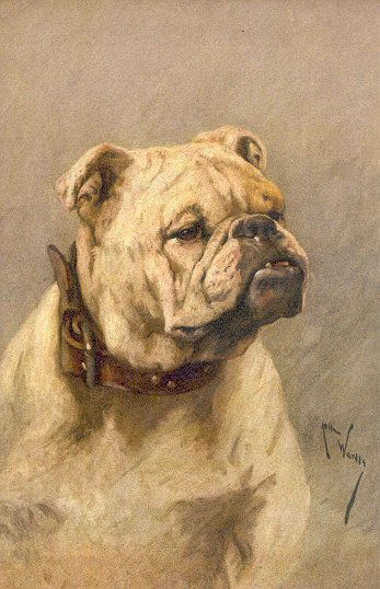 Edwin Frederick Holt British 1830 1912 Dog Paintings Dog Art