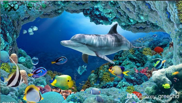 3d wall mural underwater world large 750 for Dolphin mural wallpaper