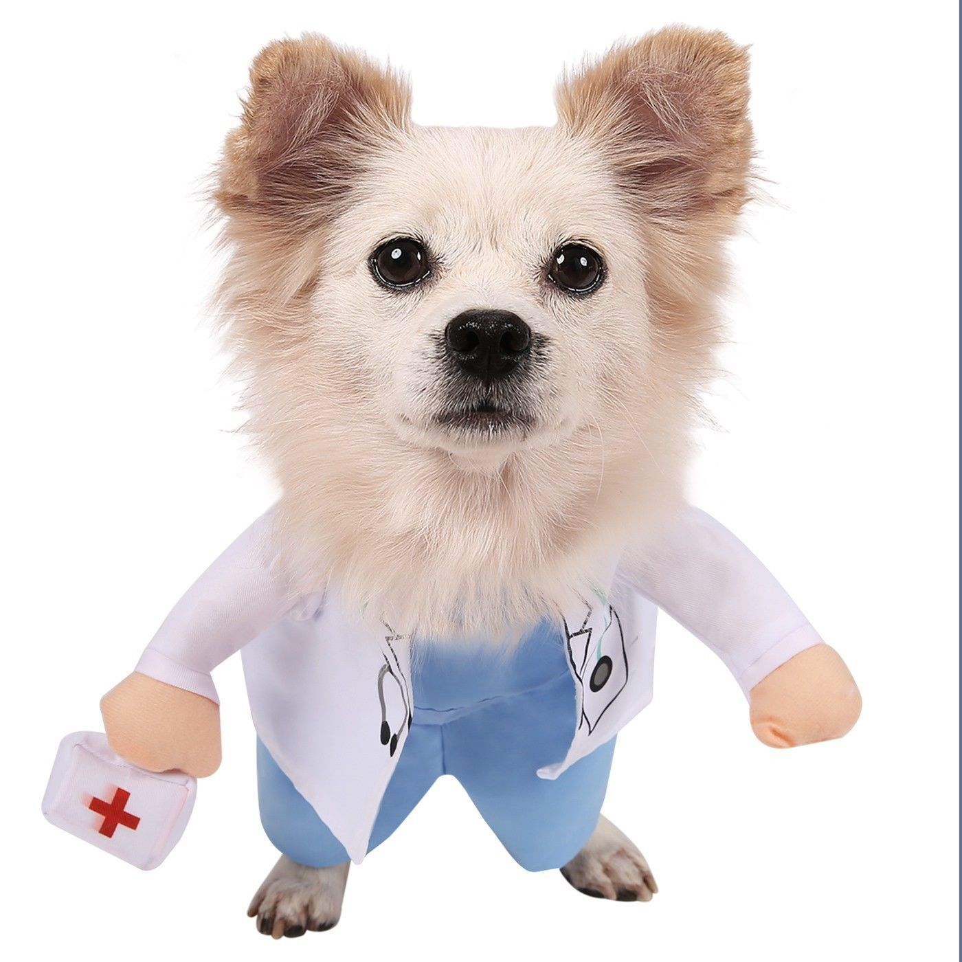 Costumes 52352 Doctor Dog Costume Halloween Pet Apparel