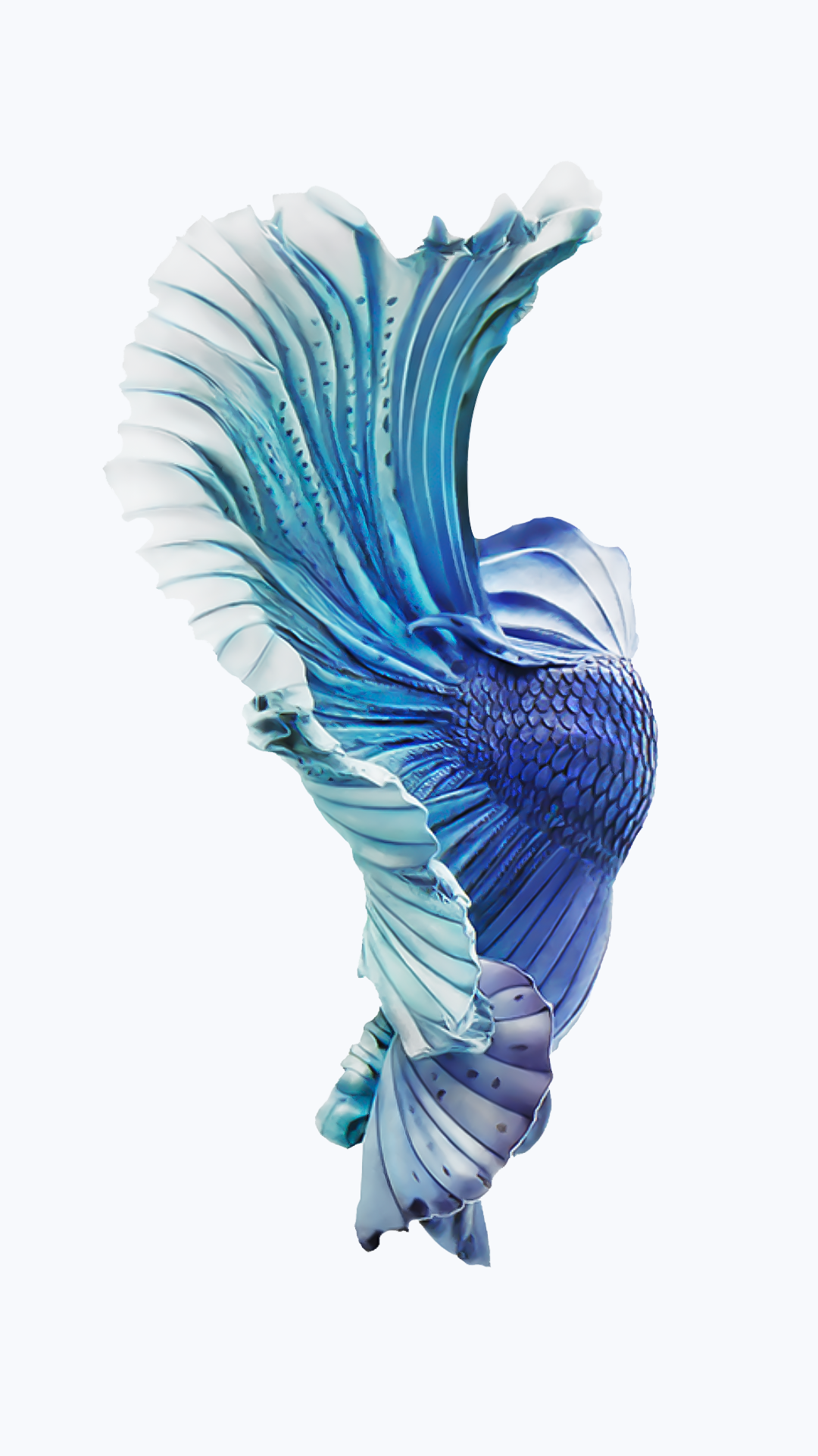 IPhone 6s Silver Blue Fish Wallpaper 1080x1921
