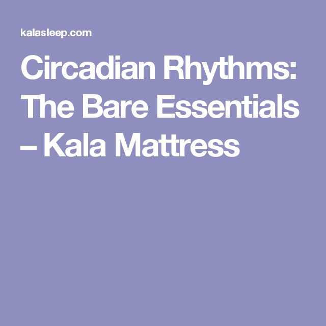 Circadian Rhythms: The Bare Essentials – Kala Mattress