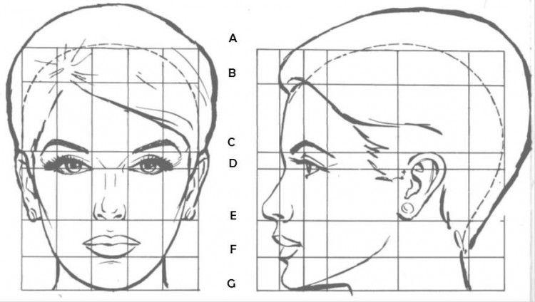 Canon Rostro Femenino Dibujar Rostros Dibujos Figura Humana Dibujo Paso A Paso