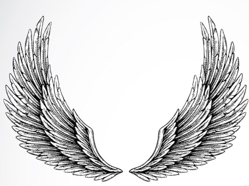 Idee dessin tatouage ailes ange eyzz2 blanc pinterest for Tableau aile d ange
