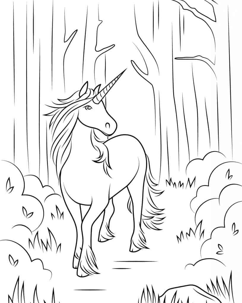 Elegant Unicorn Coloring Page | Unicorn coloring pages, Unicorn pictures,  Horse coloring pages