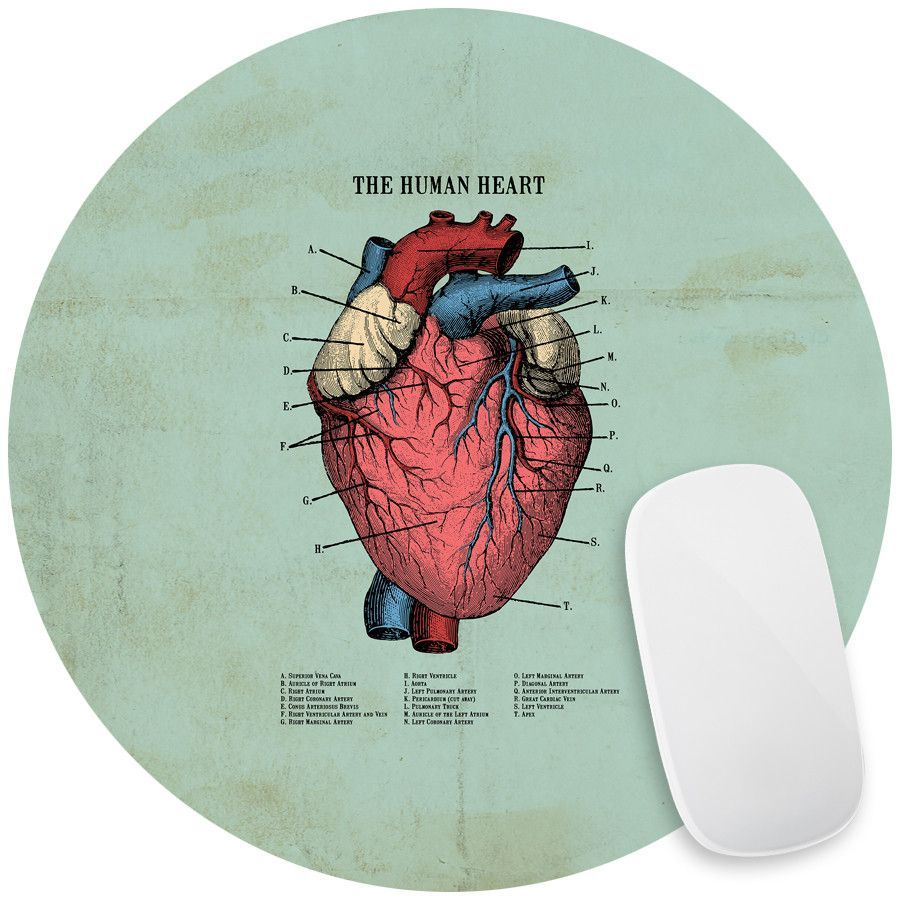 The Human Heart Mouse Pad Decal | Products | Pinterest | Human heart ...