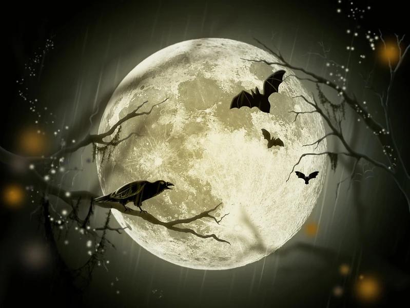 Full Moon On Halloween Halloween Full Moon Halloween Moon Halloween Pictures