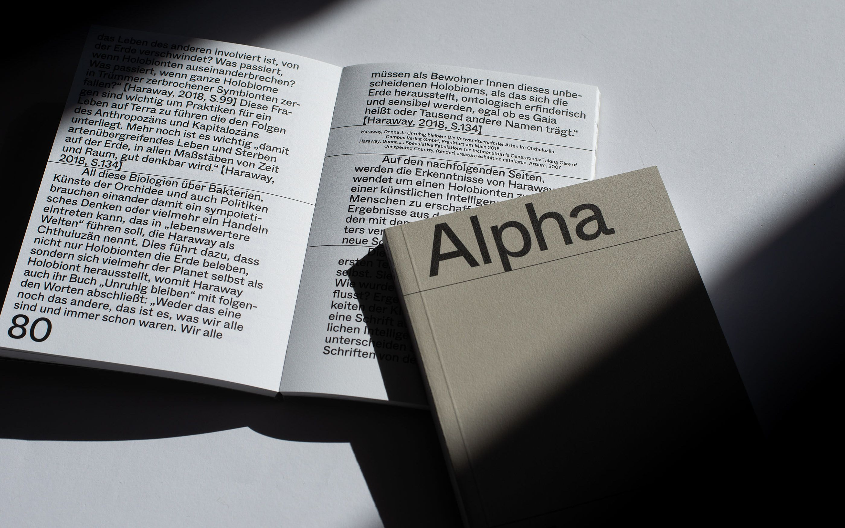Pin By Pablo Fernandez On Typography In 2020 Alpha Book Folding Typography