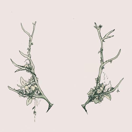 Floral Antler Tattoo: Antler Tattoos, Chest Piece Tattoos