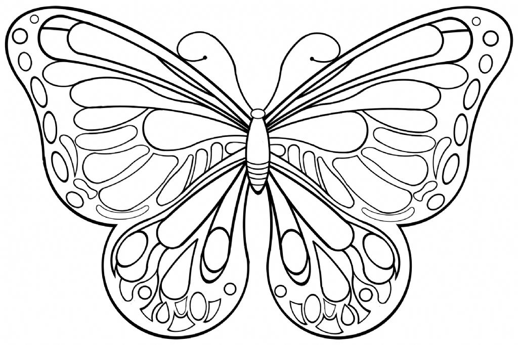 Ausmalbilder Schmetterling - Ausmalbilder Einhorn