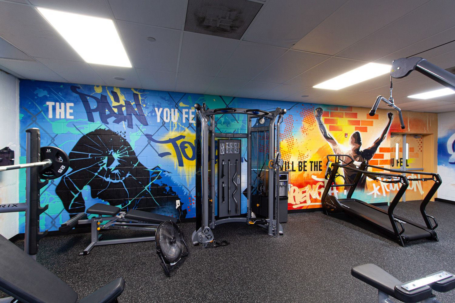Discovery Institute Gym Graffiti Mural Fitness Center Gym Art Gym Wall Decal Mural