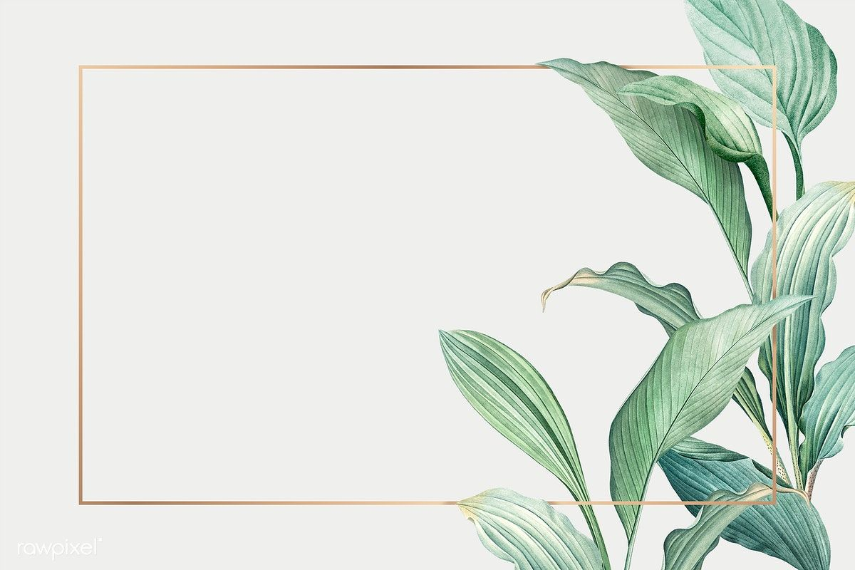 Download Premium Illustration Of Gold Frame On A Hand Drawn Tropical How To Draw Hands Leaf Background Tropical Leaves