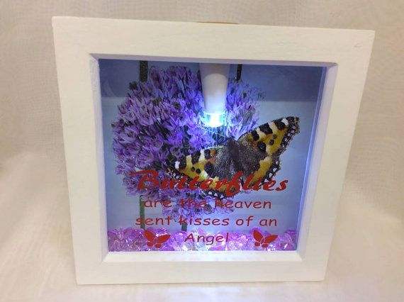 Butterfly Frame with Light by SpecialGifts4u on Etsy