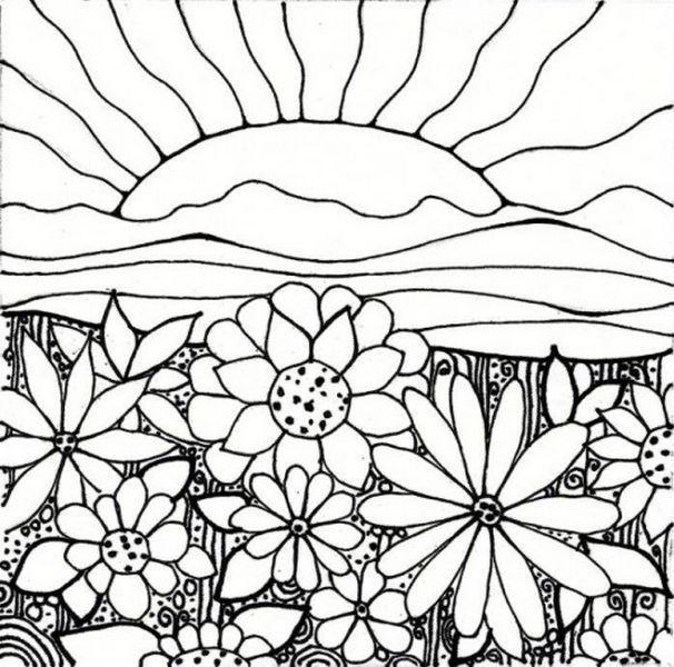 dessin champs de fleurs , Recherche Google