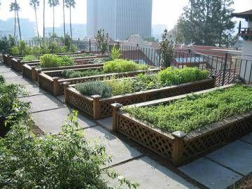 Des jardins partagés sur les toits°° | Le toit, Enquête et En ville