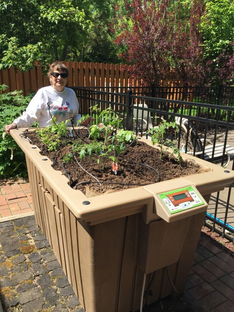 Backyard gardening made easy with the Eco Garden System self ...