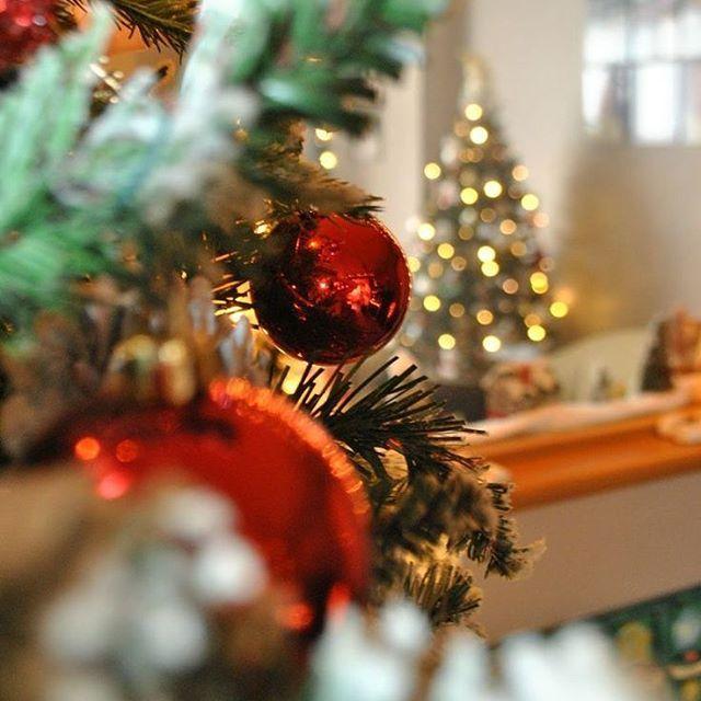 Christmas #christmasgifts #christmasgift #L4L #followback