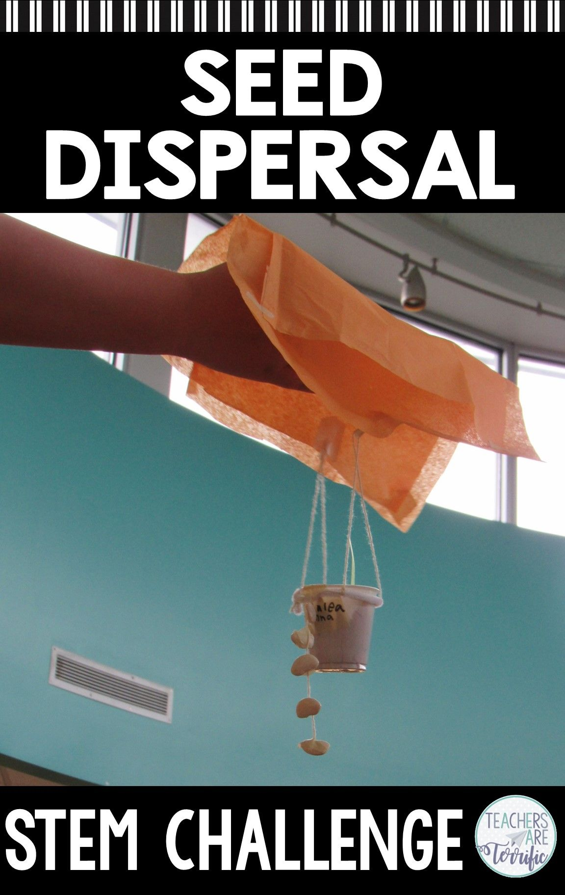 Seed Dispersal Stem Challenge