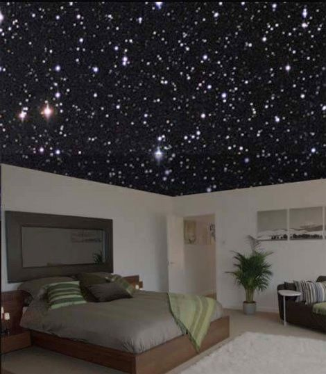 Bedroom Ceiling Stars Bedroom Cupboards With Mirror Grey Bedroom Black Furniture Bedroom Colours According To Vastu Shastra: Citywide: Glow-in-the-Dark Ceiling Painting By Galaxy