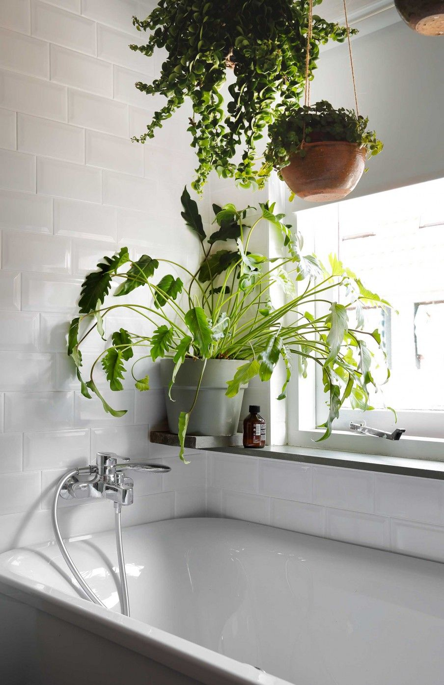12-badkamer-planten - T U B | Pinterest - Badkamer planten, Badkamer ...
