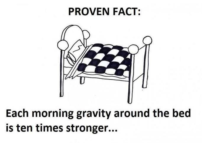 At Night Its Zero Gravity Xd Good Morning Quotes Funny Quotes