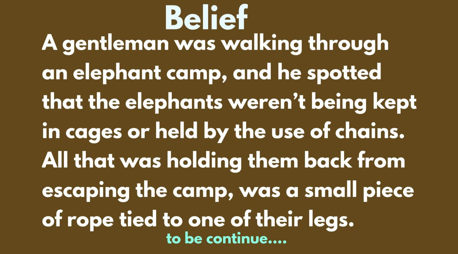 The Elephant Rope A Gentleman Wa Walking Through An Camp And He Spotted That Weren T Being Kept In 2020 Belief Inspirational Story Essay On