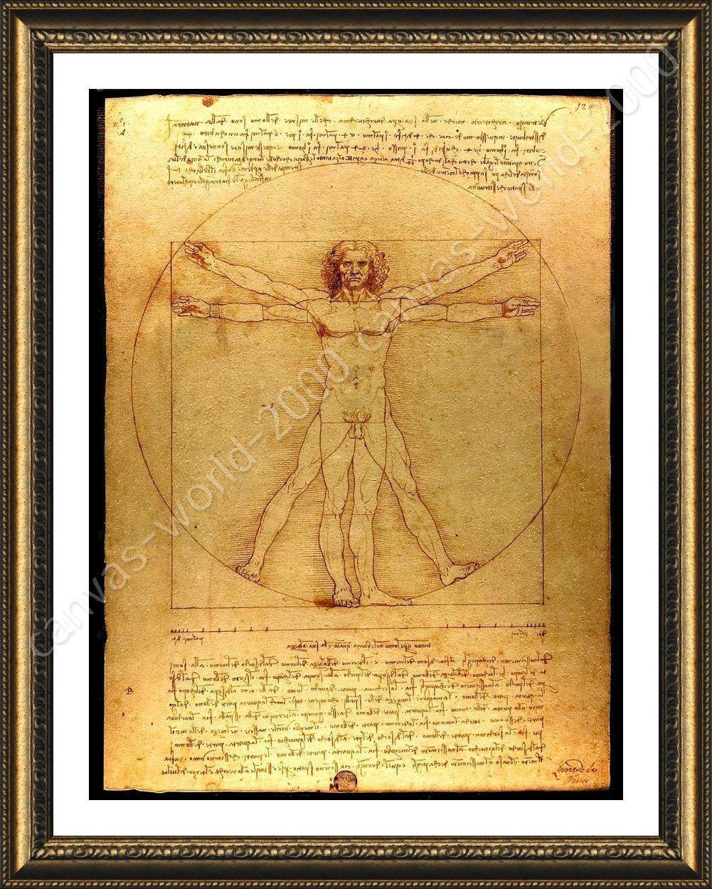 Framed Poster The Vitruvian Man Leonardo Da Vinci Wall Art Pictures ...