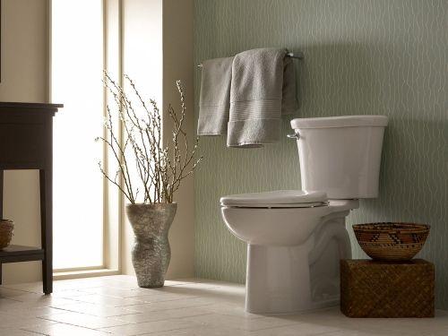 Besteed bijzondere aandacht aan de ontwerpdeco van je toilet