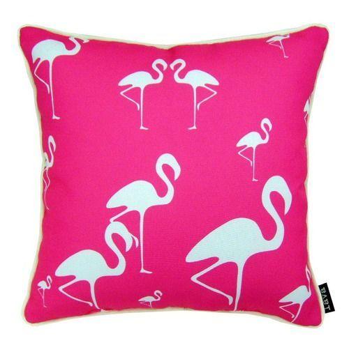 Pin On Flamingo Flock
