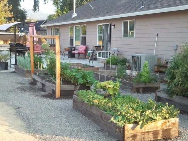 Our new raised bed garden! 2013