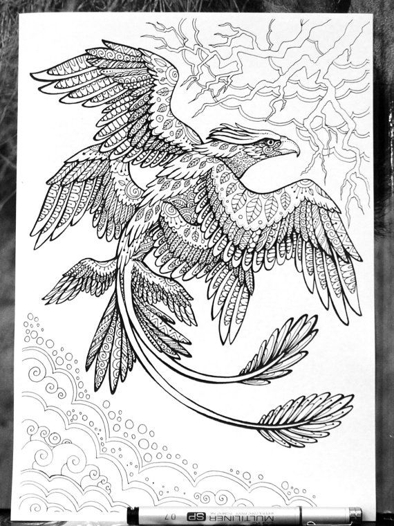 fantastic beasts coloring pages Frank the Thunderbird Fantastic Beasts Adult Coloring Page Doodle  fantastic beasts coloring pages