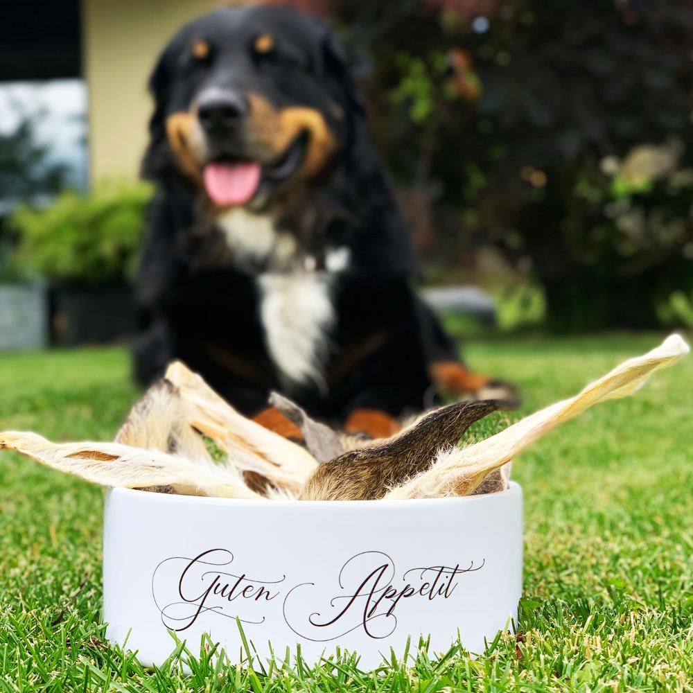 Keramik Futternapf Guten Appetit Hundenapf Futternapf Futternapf Hund