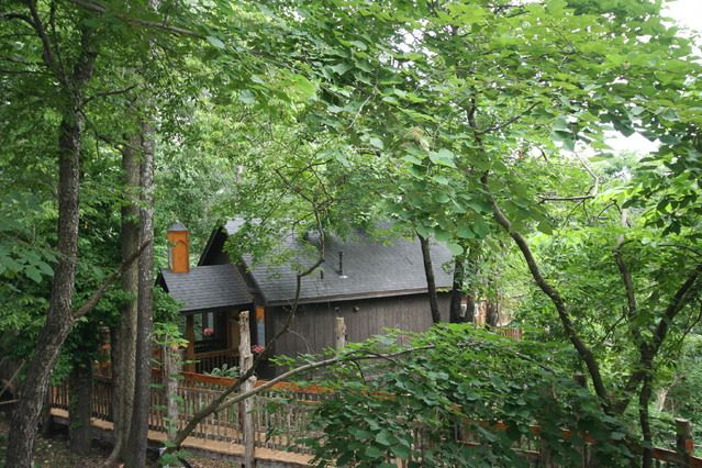 Spent Our Honeymoon In The Abbey At Oak Crest In Eureka Springs Ar So Peaceful Great Jacuzzi Eureka Springs Tree House Honeymoon